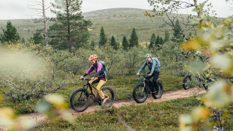 Kaksi pyöräilijää avotunturissa. Kuva Henrik Morkel